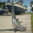A 12 Foot Tiger Shark, Hauled In Off The Bahamas Contained The Body Parts Of A Man...